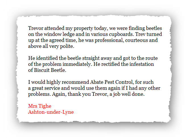 This is an image of a domestic testimonial for Abate Pest Control Services.